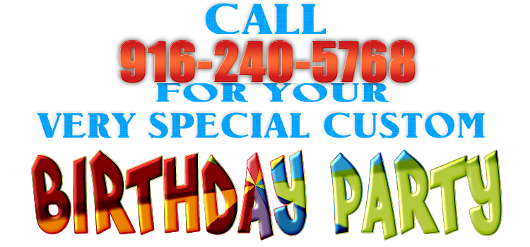 Birthday Pony Party Packages Your Pony Birthday Party