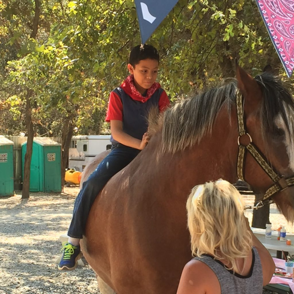 Penryn Oak Stables Kid Party Pictures